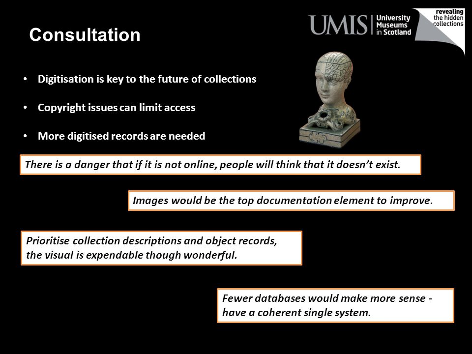 Consultation Digitisation is key to the future of collections Copyright issues can limit access More digitised records are needed There is a danger that if it is not online, people will think that it doesnt exist.