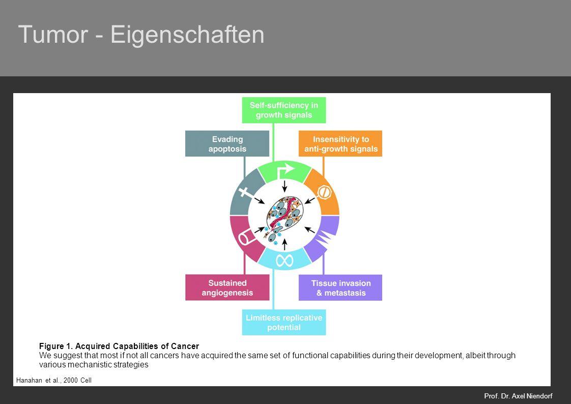 Tumor - Eigenschaften Prof. Dr. Axel Niendorf Hanahan et al., 2000 Cell Figure 1.