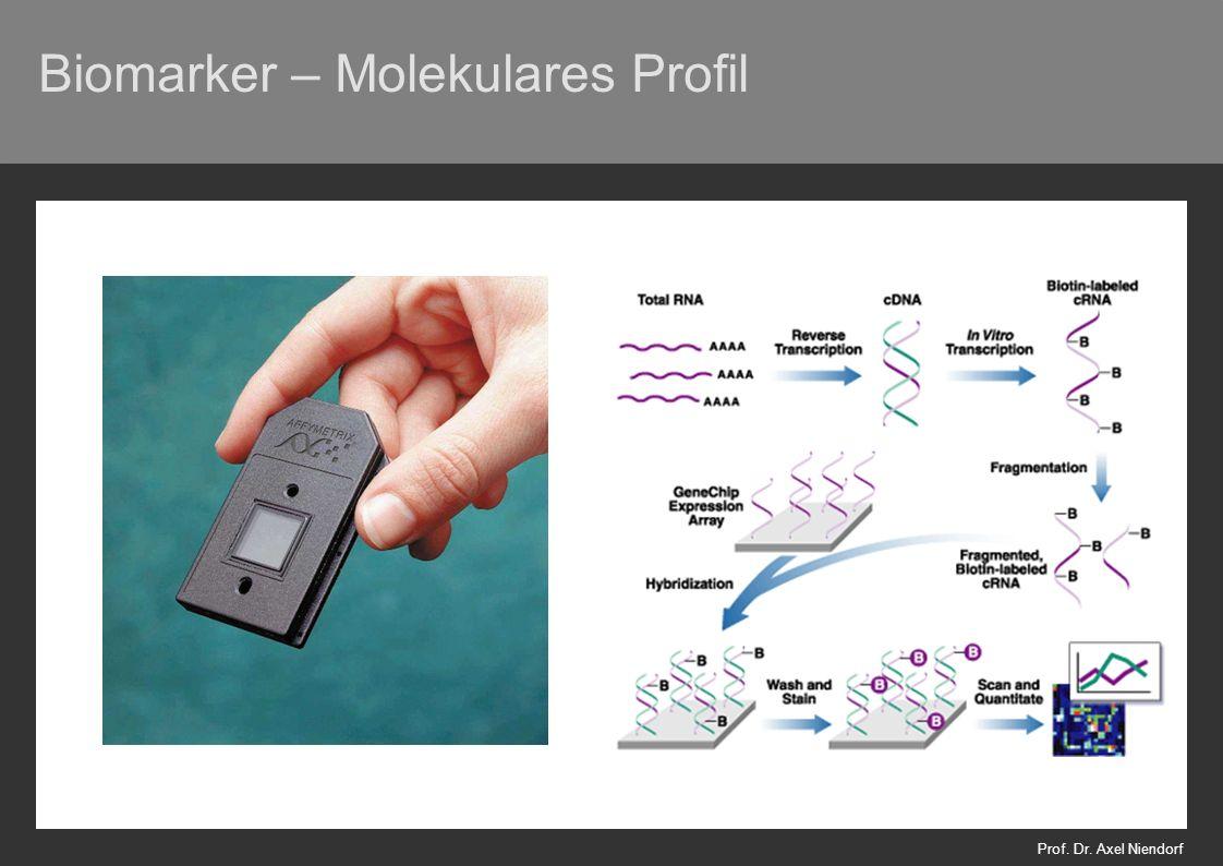 Biomarker – Molekulares Profil Prof. Dr. Axel Niendorf