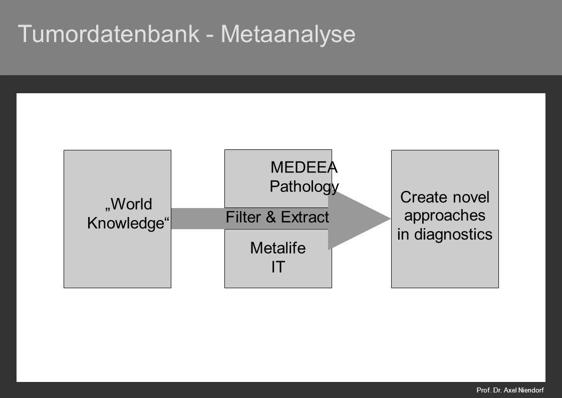 Tumordatenbank - Metaanalyse Prof. Dr.