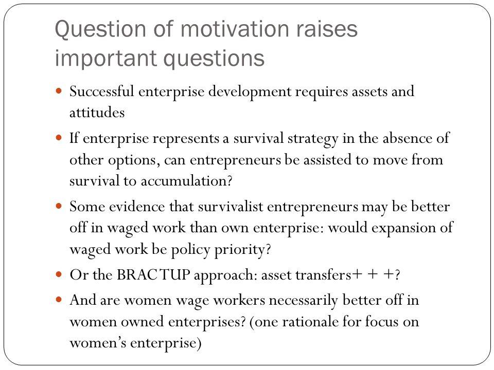 Question of motivation raises important questions Successful enterprise development requires assets and attitudes If enterprise represents a survival