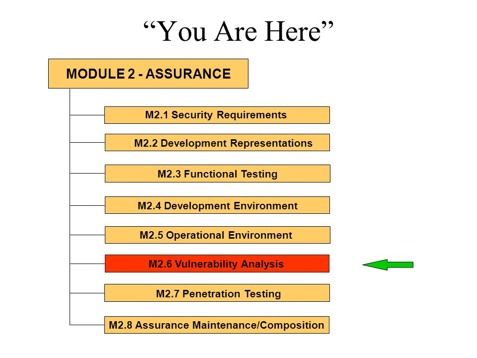 You Are Here M2.1 Security Requirements M2.2 Development Representations M2.3 Functional Testing M2.4 Development Environment M2.5 Operational Environ