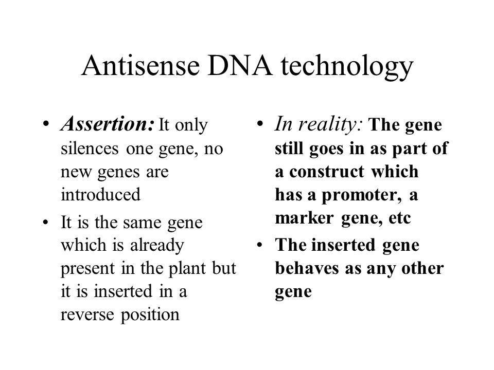 Antisense DNA technology Assertion: It only silences one gene, no new genes are introduced It is the same gene which is already present in the plant but it is inserted in a reverse position In reality: The gene still goes in as part of a construct which has a promoter, a marker gene, etc The inserted gene behaves as any other gene