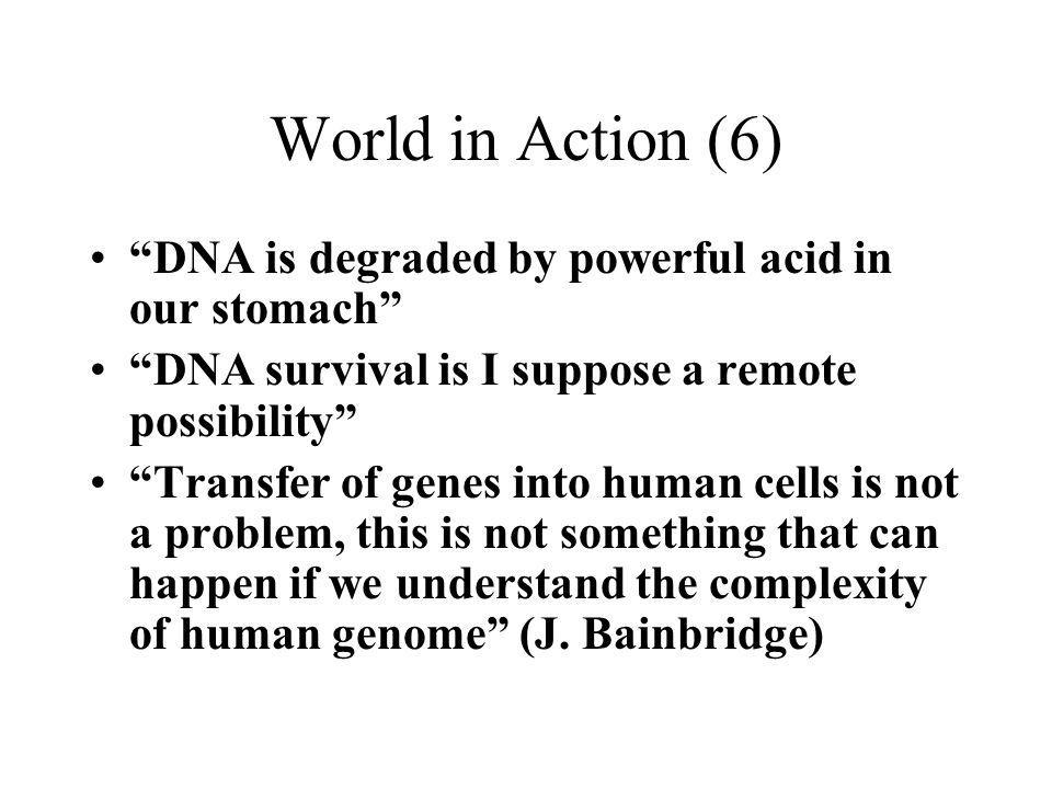World in Action (6) DNA is degraded by powerful acid in our stomach DNA survival is I suppose a remote possibility Transfer of genes into human cells is not a problem, this is not something that can happen if we understand the complexity of human genome (J.
