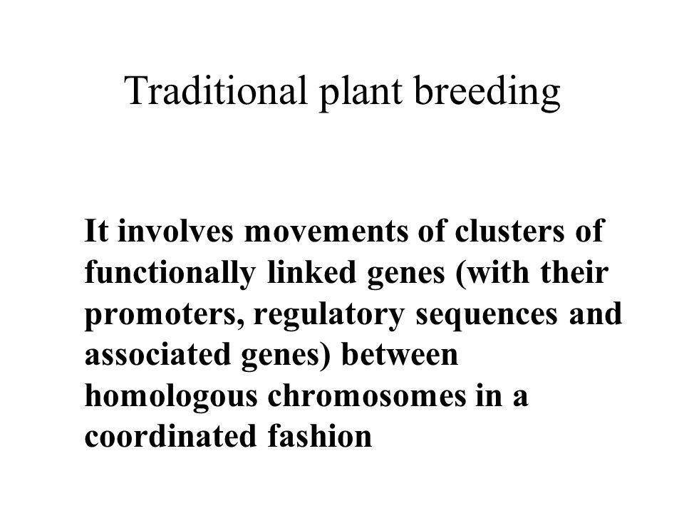 Traditional plant breeding It involves movements of clusters of functionally linked genes (with their promoters, regulatory sequences and associated genes) between homologous chromosomes in a coordinated fashion