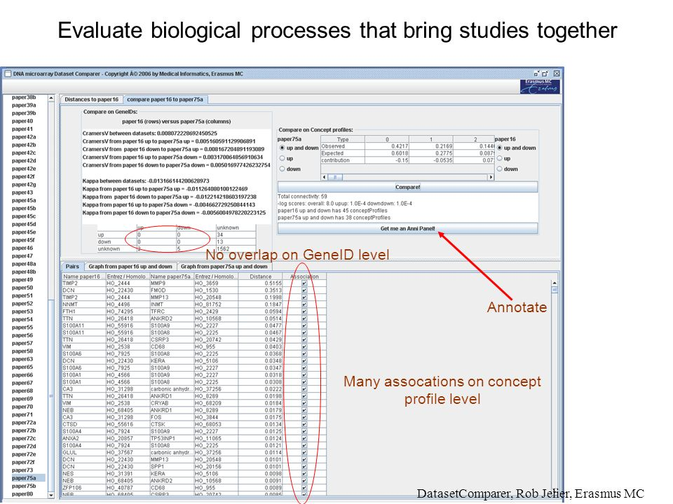 Evaluate biological processes that bring studies together DatasetComparer, Rob Jelier, Erasmus MC No overlap on GeneID level Many assocations on concept profile level Annotate