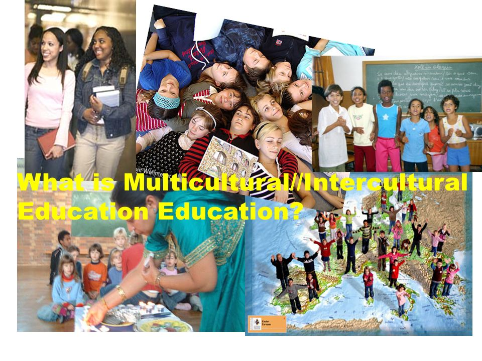 What is Multicultural//Intercultural Education Education?