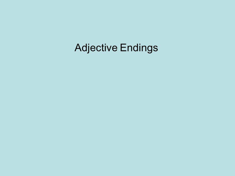 Nominative case There are two adjective ending in the nominative case for –der words: -e or –en Masculine: Der blaue Regenmantel ist zu klein.