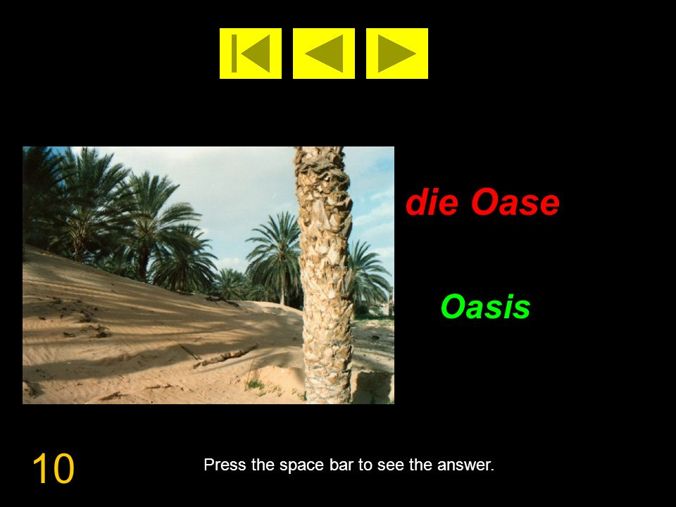 10 die Oase Oasis Press the space bar to see the answer.