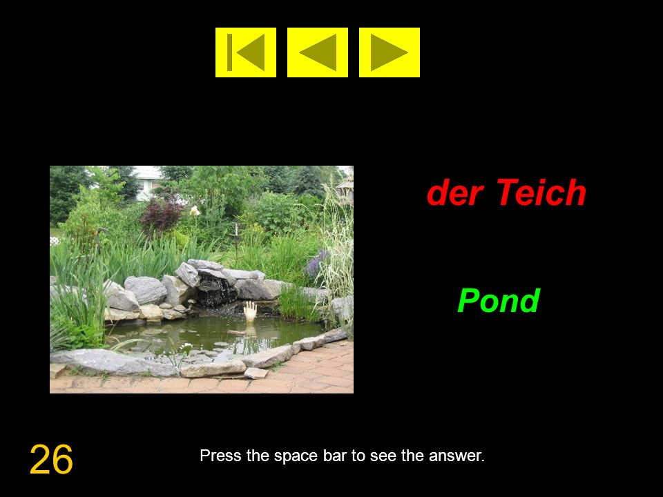 26 der Teich Pond Press the space bar to see the answer.