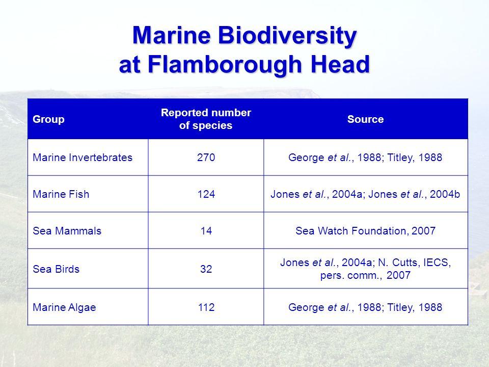 Marine Biodiversity at Flamborough Head Group Reported number of species Source Marine Invertebrates270George et al., 1988; Titley, 1988 Marine Fish12