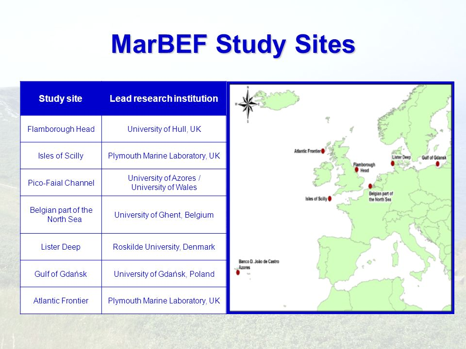 MarBEF Study Sites Study siteLead research institution Flamborough HeadUniversity of Hull, UK Isles of ScillyPlymouth Marine Laboratory, UK Pico-Faial