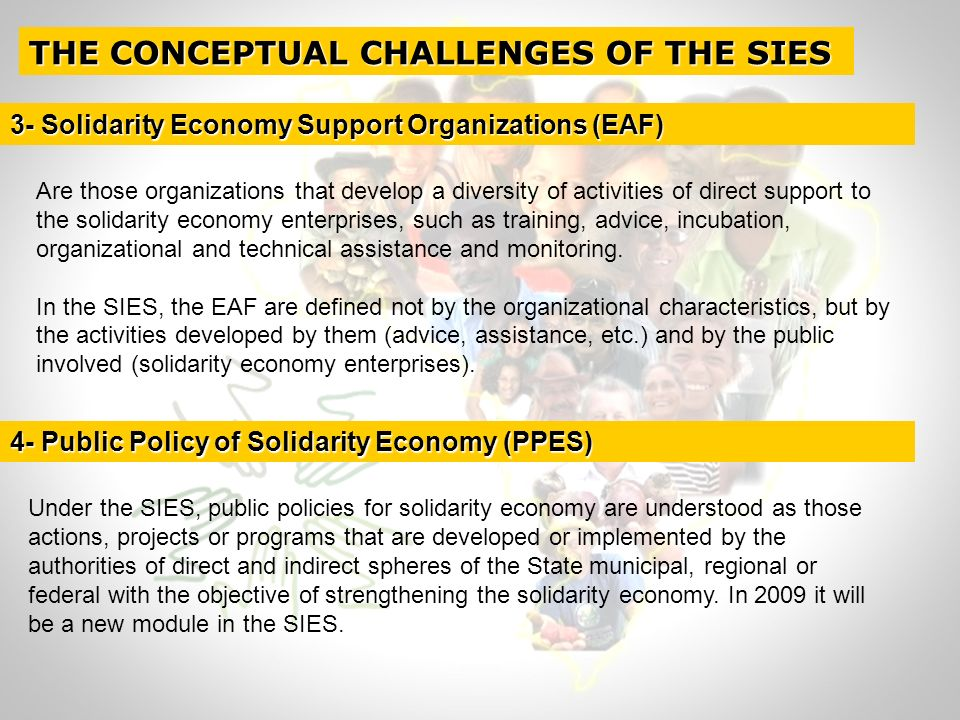Are those organizations that develop a diversity of activities of direct support to the solidarity economy enterprises, such as training, advice, incubation, organizational and technical assistance and monitoring.