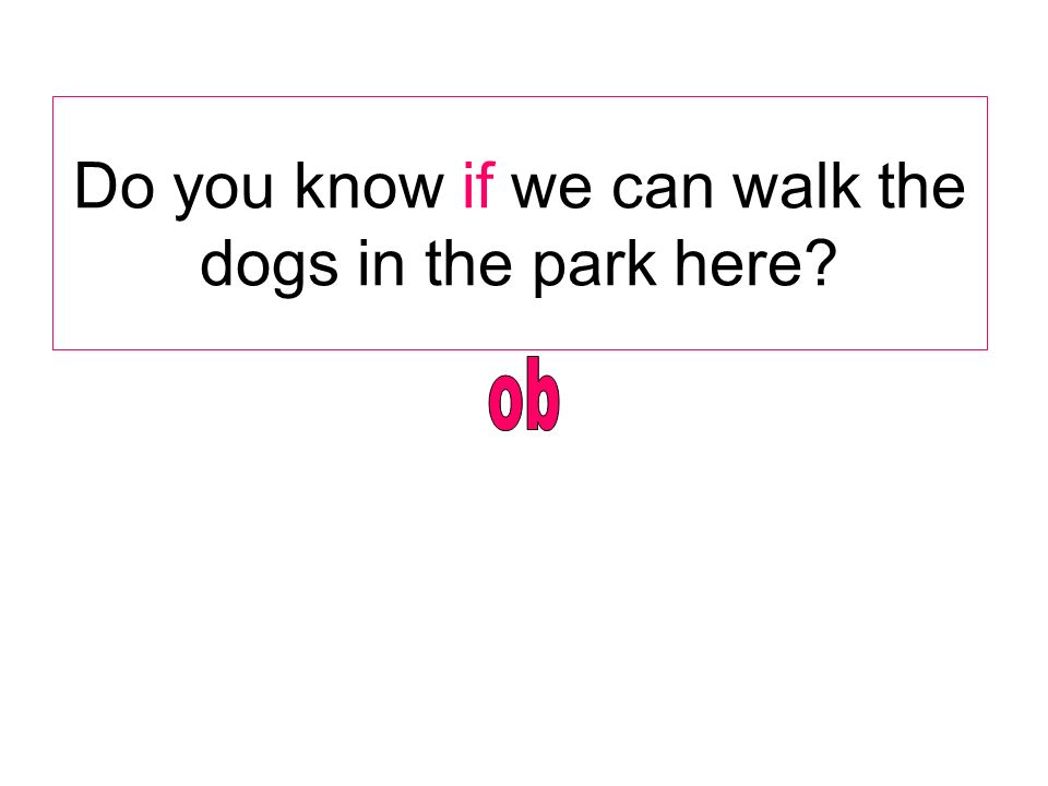 Do you know if we can walk the dogs in the park here