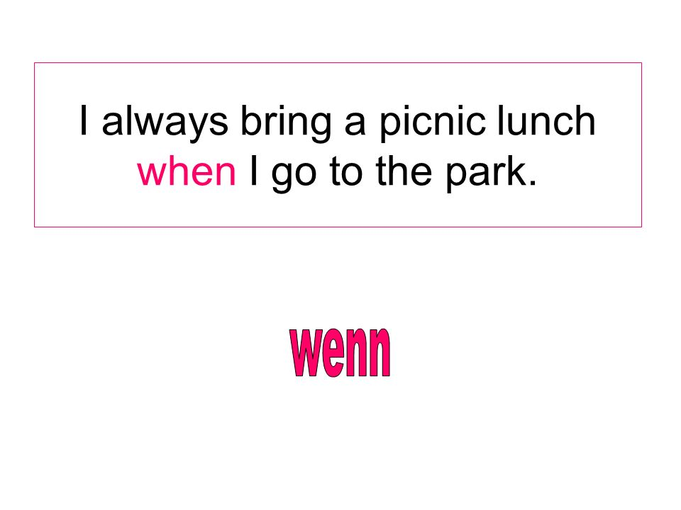 I always bring a picnic lunch when I go to the park.
