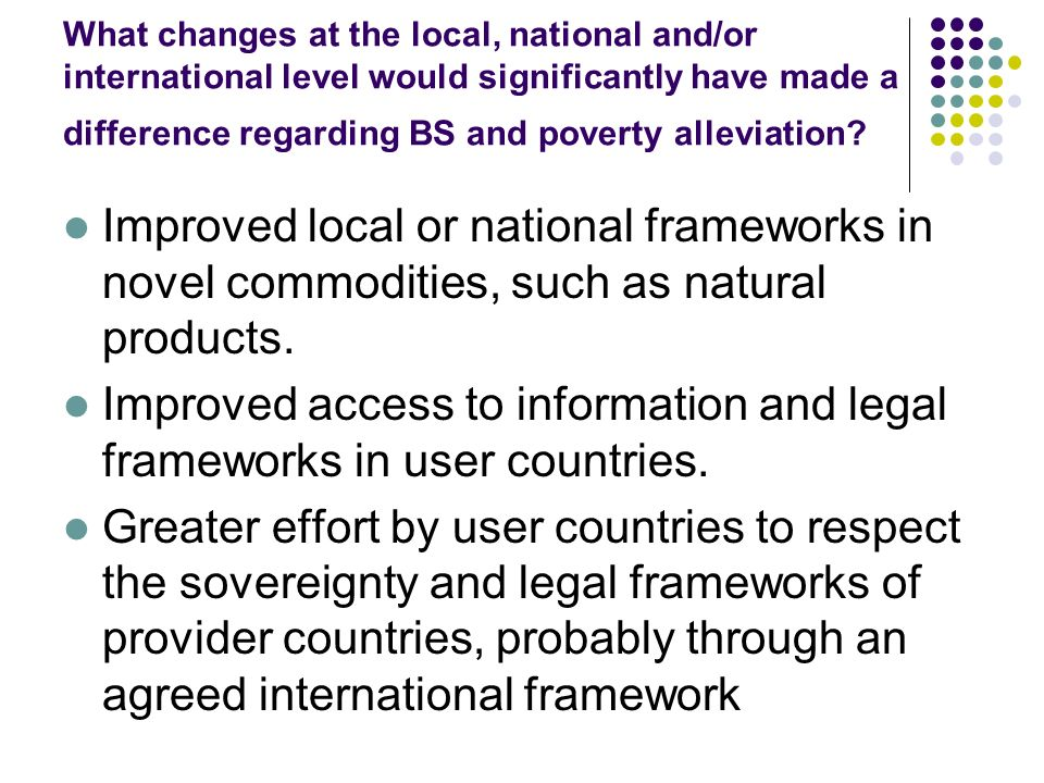 What changes at the local, national and/or international level would significantly have made a difference regarding BS and poverty alleviation? Improv