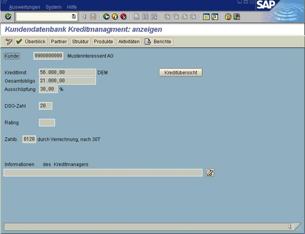 Page 16Date 2001/02/15Thomas MickleyCostumer Database System jw Kreditmanagement
