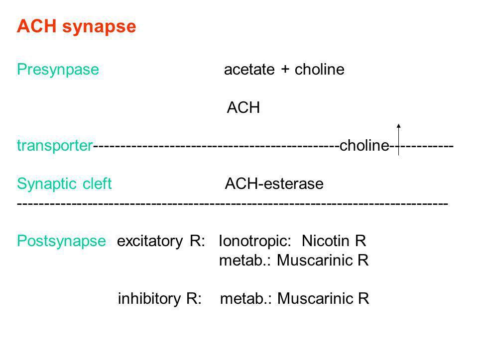 ACH synapse Presynpase acetate + choline ACH transporter----------------------------------------------choline------------ Synaptic cleft ACH-esterase