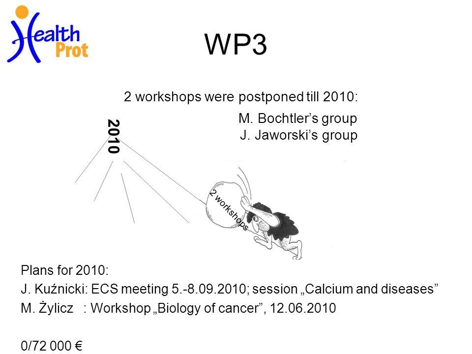2 workshops 2010 WP3 2 workshops were postponed till 2010: M.