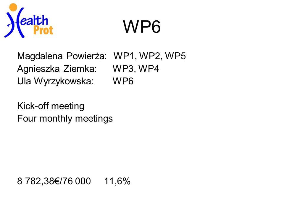 WP6 Magdalena Powierża: WP1, WP2, WP5 Agnieszka Ziemka: WP3, WP4 Ula Wyrzykowska: WP6 Kick-off meeting Four monthly meetings 8 782,38/76 000 11,6%