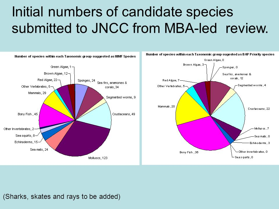 Initial numbers of candidate species submitted to JNCC from MBA-led review. (Sharks, skates and rays to be added)