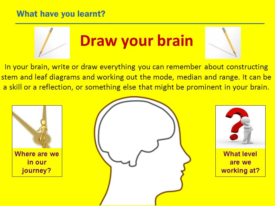 Draw your brain What have you learnt? In your brain, write or draw everything you can remember about constructing stem and leaf diagrams and working o