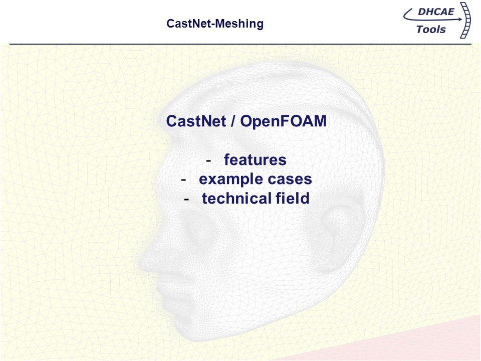 CastNet-Meshing CastNet / OpenFOAM -features -example cases -technical field