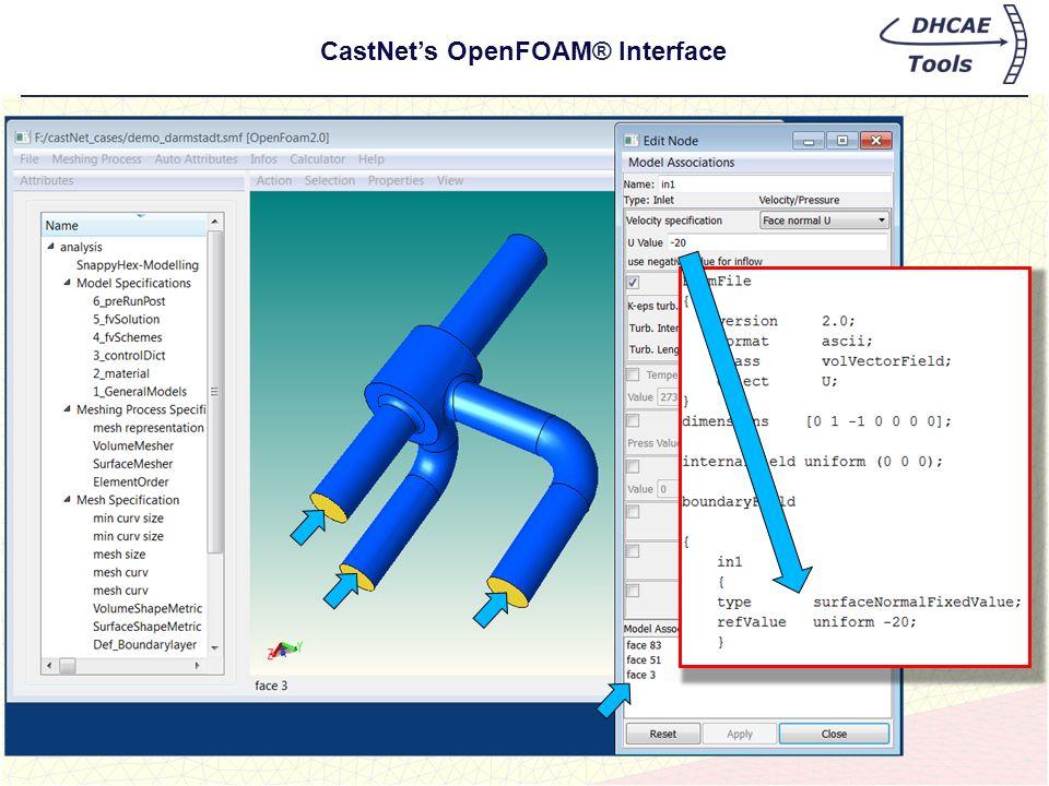 CastNets OpenFOAM® Interface