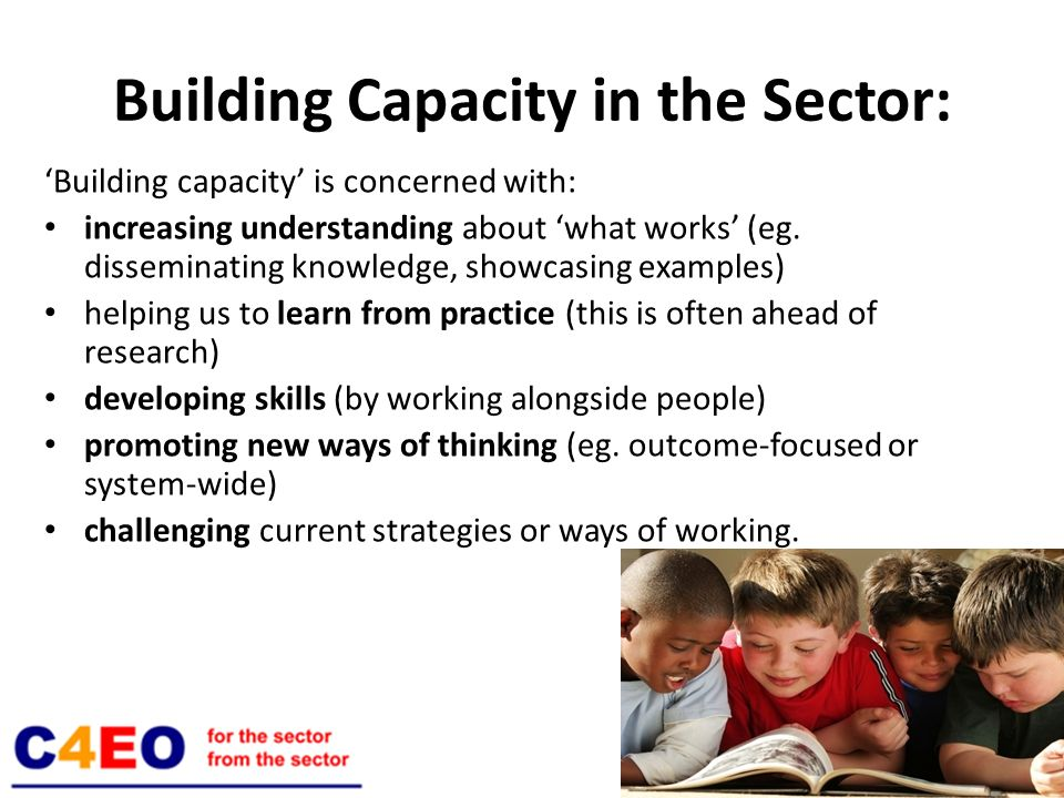 Building Capacity in the Sector: Building capacity is concerned with: increasing understanding about what works (eg.