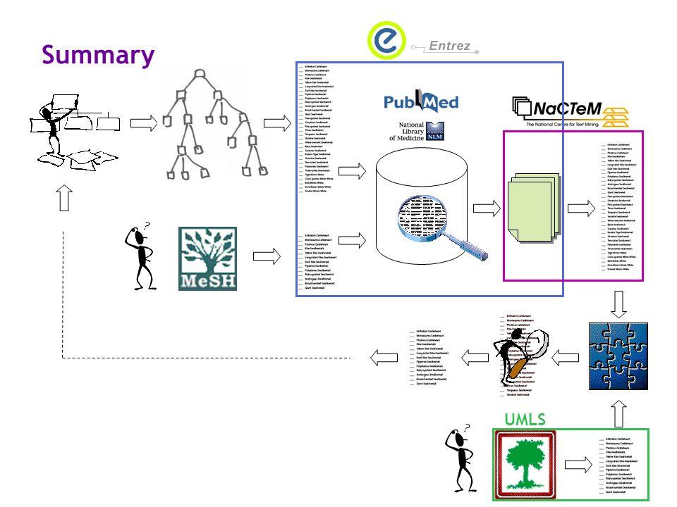 Summary UMLS