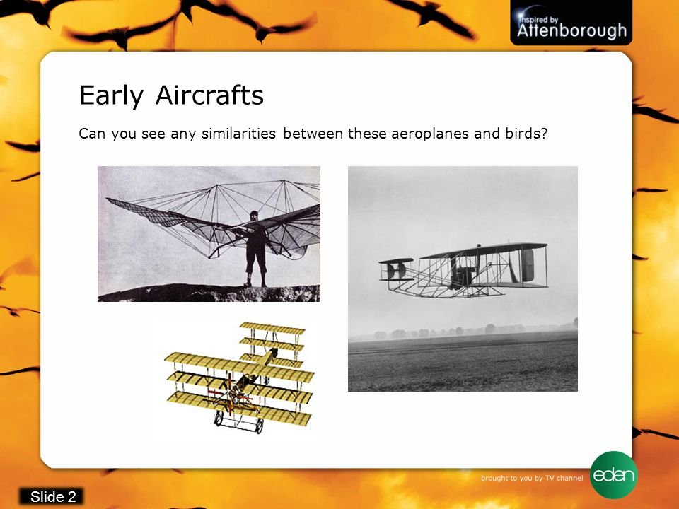 Early Aircrafts Can you see any similarities between these aeroplanes and birds? Slide 2