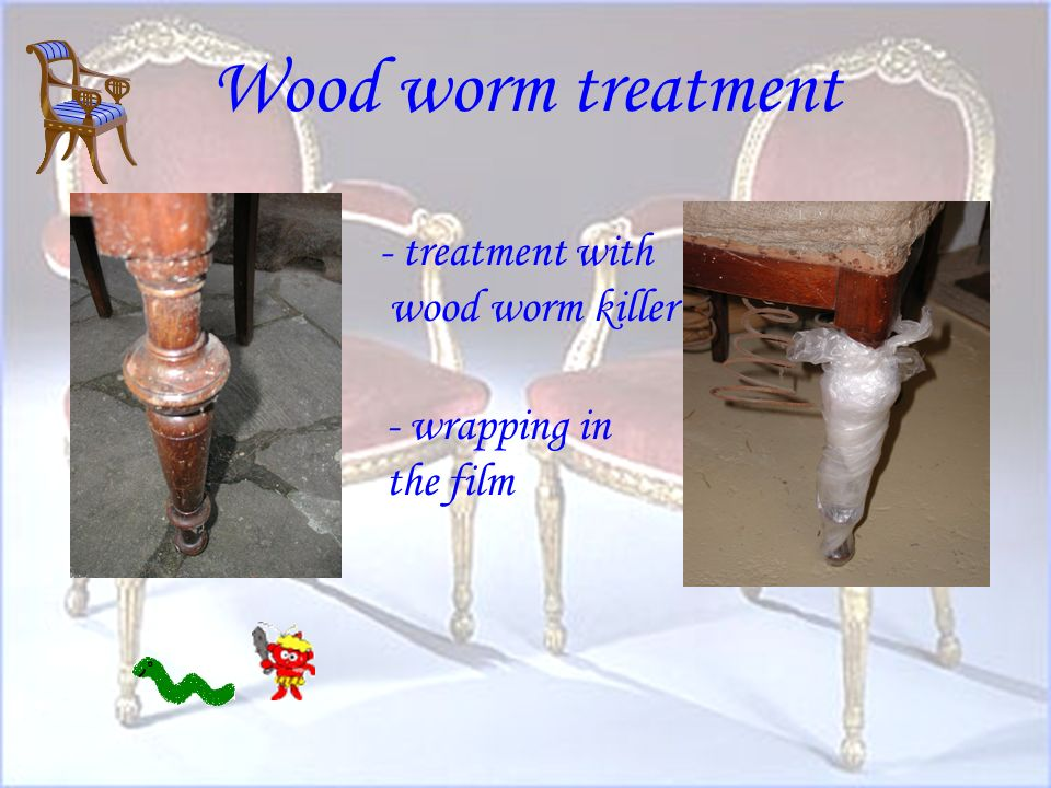 Wood worm treatment - treatment with wood worm killer - wrapping in the film