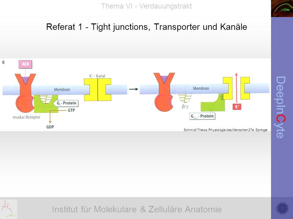 Institut für Molekulare & Zelluläre Anatomie DeepInCyte Thema VI - Verdauungstrakt Referat 1 - Tight junctions, Transporter und Kanäle Schmidt Thews: Physiologie des Menschen 27e.