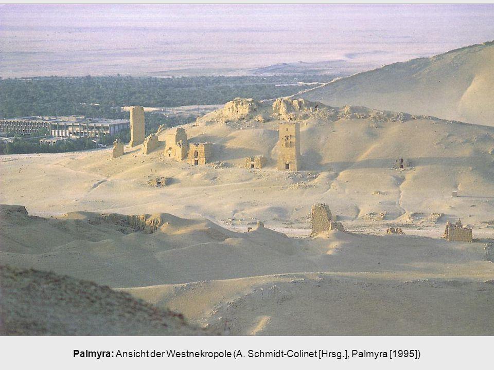 Palmyra: Ansicht der Westnekropole (A. Schmidt-Colinet [Hrsg.], Palmyra [1995])