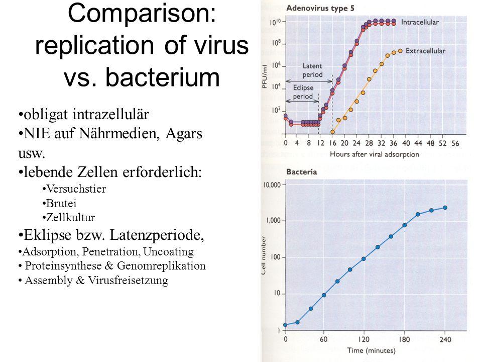 Comparison: replication of virus vs. bacterium obligat intrazellulär NIE auf Nährmedien, Agars usw. lebende Zellen erforderlich: Versuchstier Brutei Z