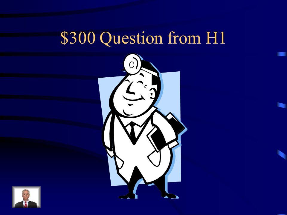 $200 Answer from H1 Was ist Der Pilot?