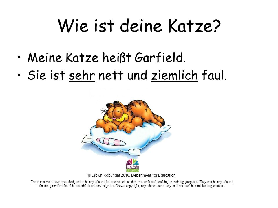 Wie ist deine Katze? Meine Katze heißt Garfield. Sie ist sehr nett und ziemlich faul. © Crown copyright 2010, Department for Education These materials