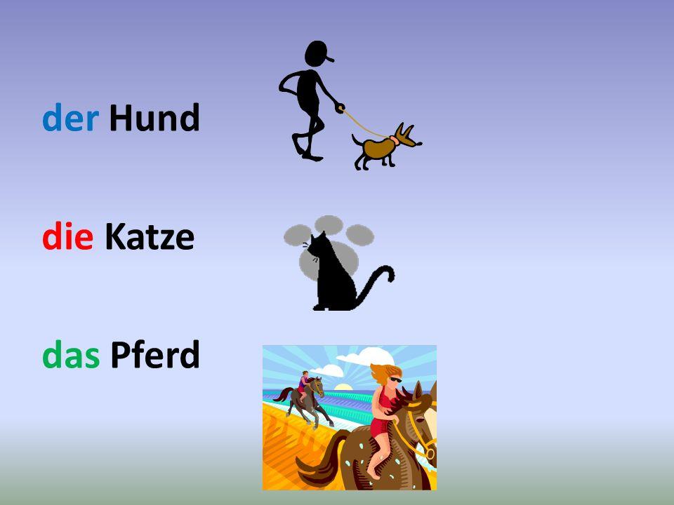 der Hund die Katze das Pferd