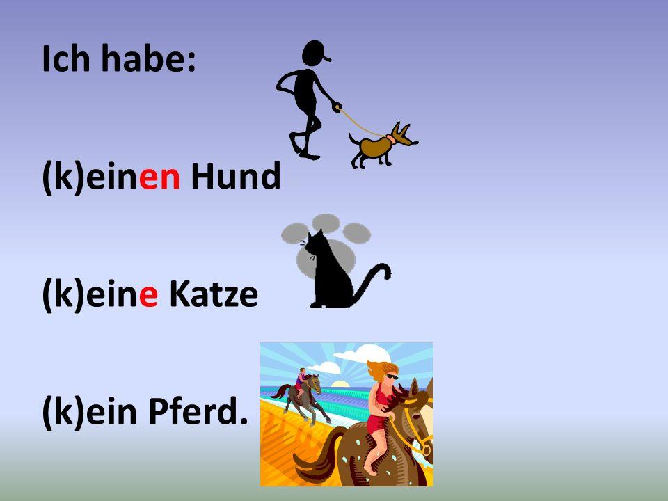 Ich habe: (k)einen Hund (k)eine Katze (k)ein Pferd.