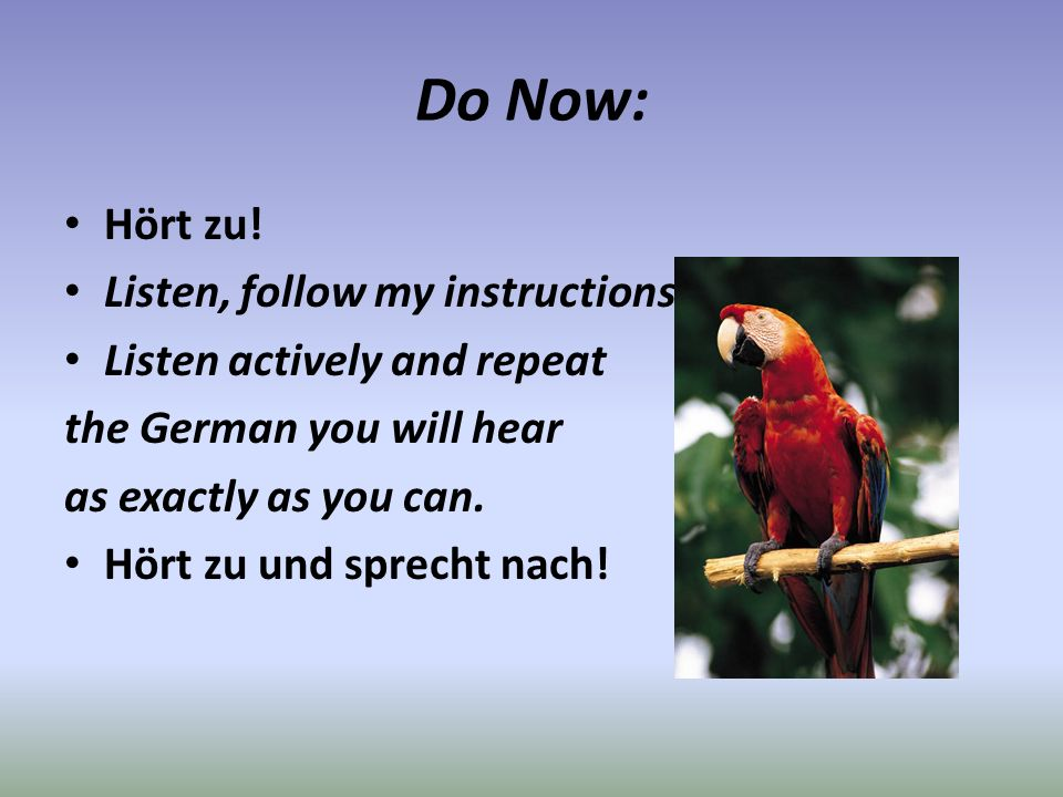 Do Now: Hört zu! Listen, follow my instructions. Listen actively and repeat the German you will hear as exactly as you can. Hört zu und sprecht nach!