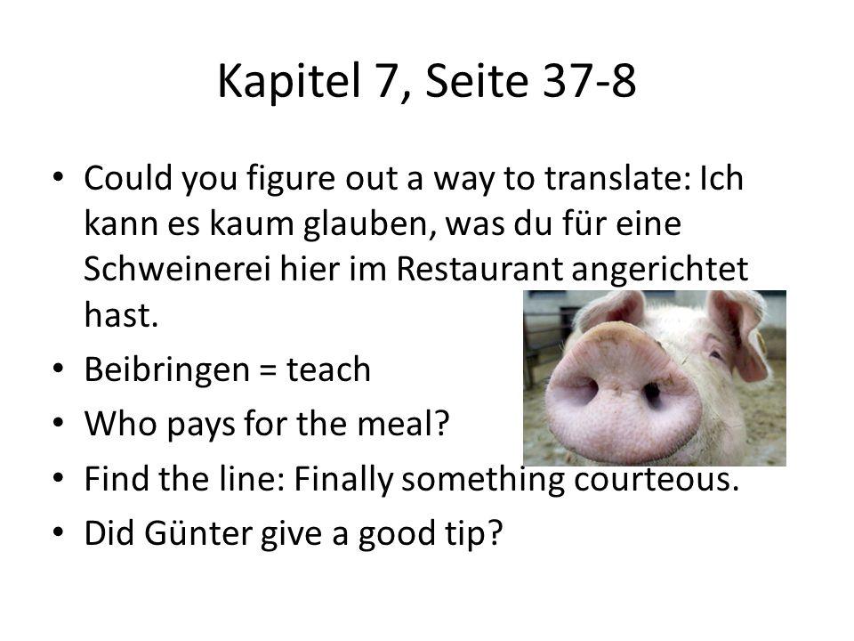 Kapitel 7, Seite 37-8 Could you figure out a way to translate: Ich kann es kaum glauben, was du für eine Schweinerei hier im Restaurant angerichtet ha