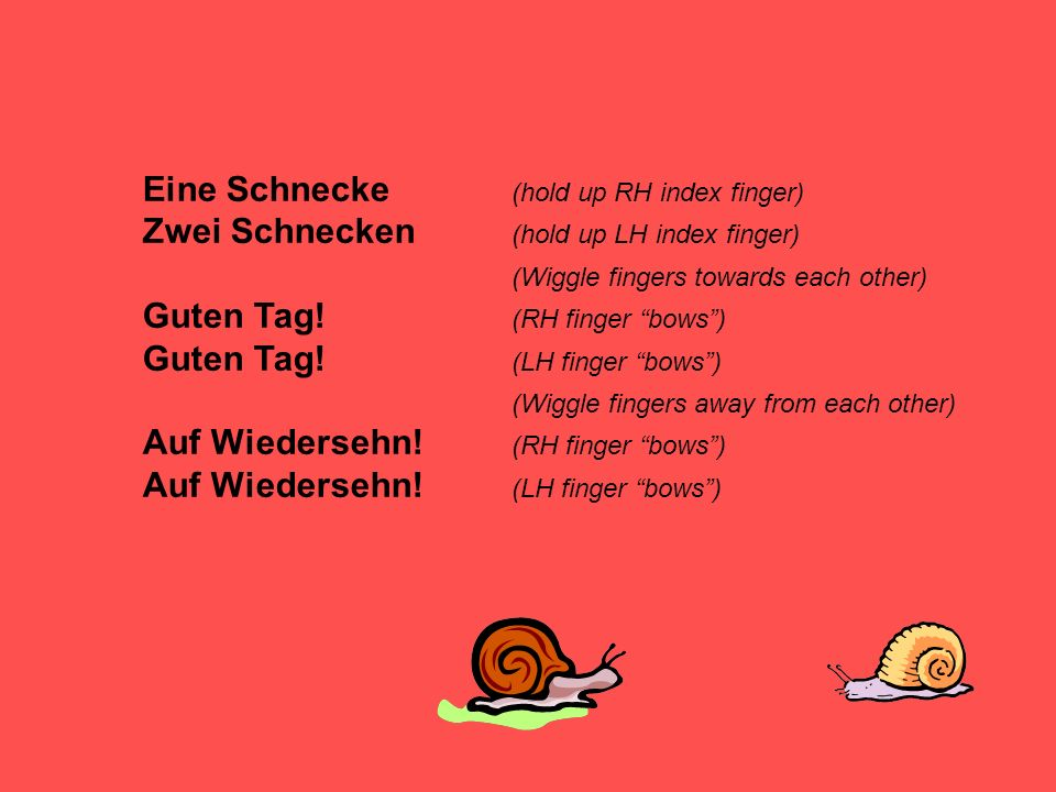 Eine Schnecke (hold up RH index finger) Zwei Schnecken (hold up LH index finger) (Wiggle fingers towards each other) Guten Tag.