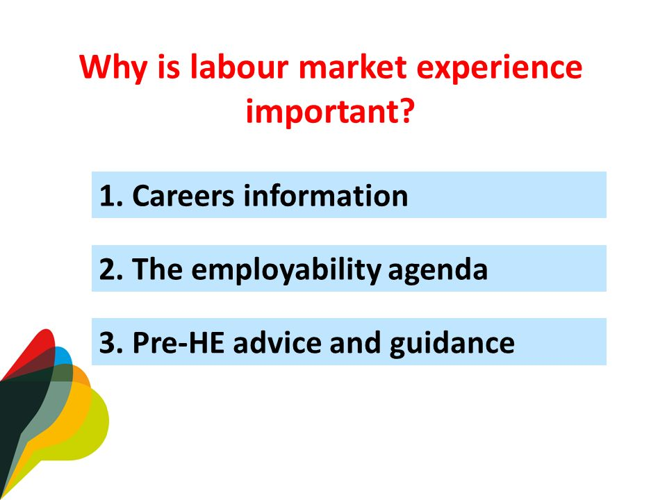 2. The employability agenda Why is labour market experience important.