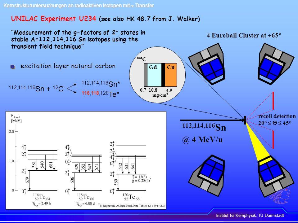 Institut für Kernphysik, TU Darmstadt Kernstrukturuntersuchungen an radioaktiven Isotopen mit -Transfer UNILAC Experiment U234 118 Te 114 Sn Prompt particle gated -ray spectra 12 C Si spectrum channel counts E (keV) counts 51 o 65 o 79 o 4 + 2 + 2 + 0 + 3 - 2 + 5 - 4 + e-e+e-e+ 2 + 0 + 4 + 2 + 2 2 + 2 + e-e+e-e+ 6 + 4 +