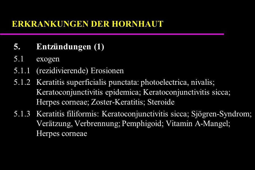 5.Entzündungen (1) 5.1exogen 5.1.1(rezidivierende) Erosionen 5.1.2Keratitis superficialis punctata: photoelectrica, nivalis; Keratoconjunctivitis epidemica; Keratoconjunctivitis sicca; Herpes corneae; Zoster-Keratitis; Steroide 5.1.3Keratitis filiformis: Keratoconjunctivitis sicca; Sjögren-Syndrom; Verätzung, Verbrennung; Pemphigoid; Vitamin A-Mangel; Herpes corneae ERKRANKUNGEN DER HORNHAUT