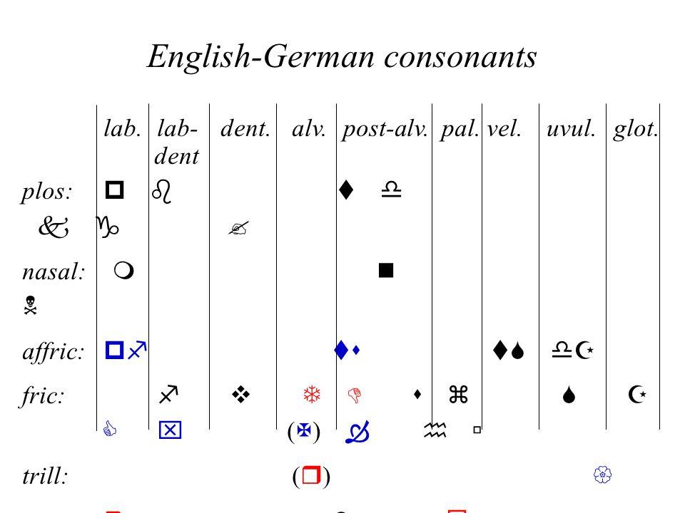 English-German consonants lab.lab- dent.alv. post-alv.pal.vel.uvul. glot. dent plos: p bt d k g nasal: m n N affric: pf ts tS dZ fric: f v T D s z S Z