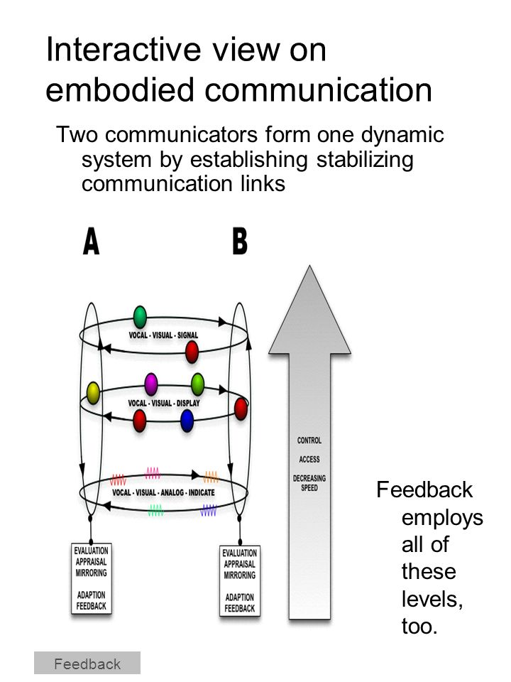 Interactive view on embodied communication Two communicators form one dynamic system by establishing stabilizing communication links Feedback Feedback