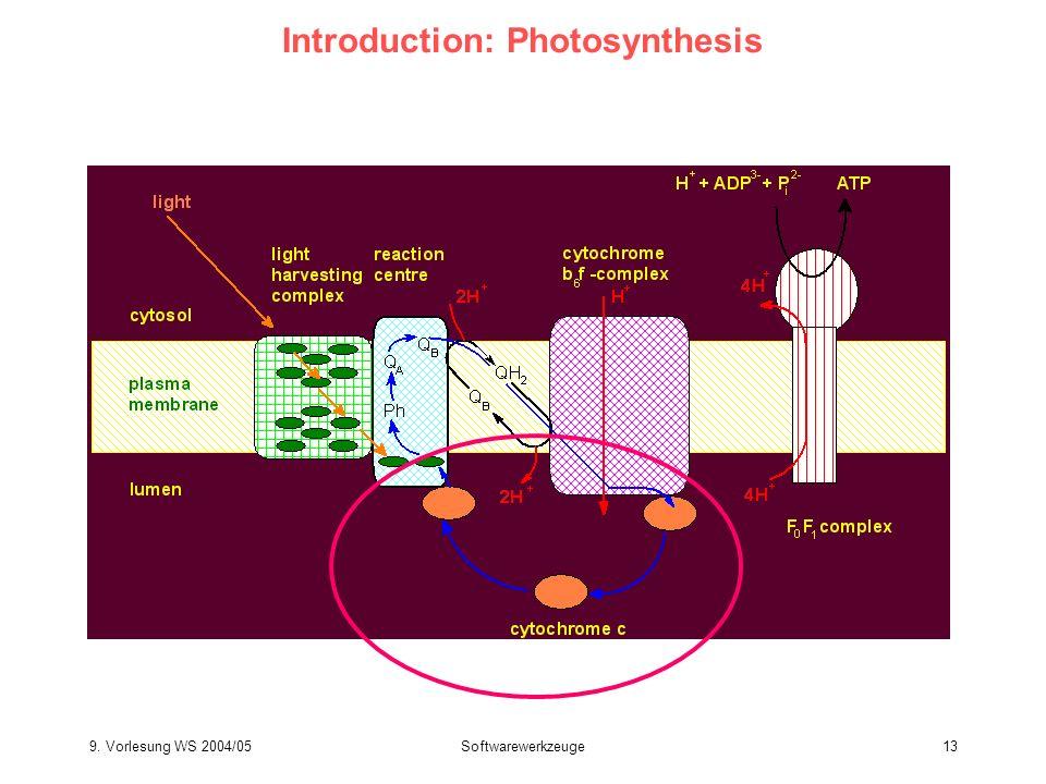 9. Vorlesung WS 2004/05Softwarewerkzeuge13 Introduction: Photosynthesis