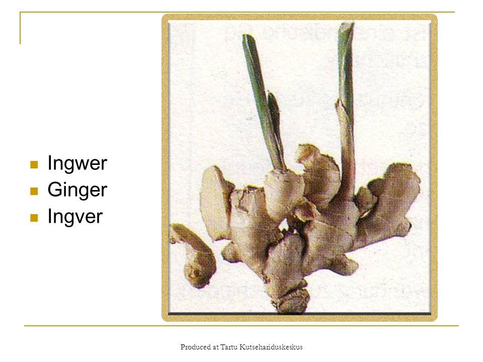 Produced at Tartu Kutsehariduskeskus Ingwer Ginger Ingver