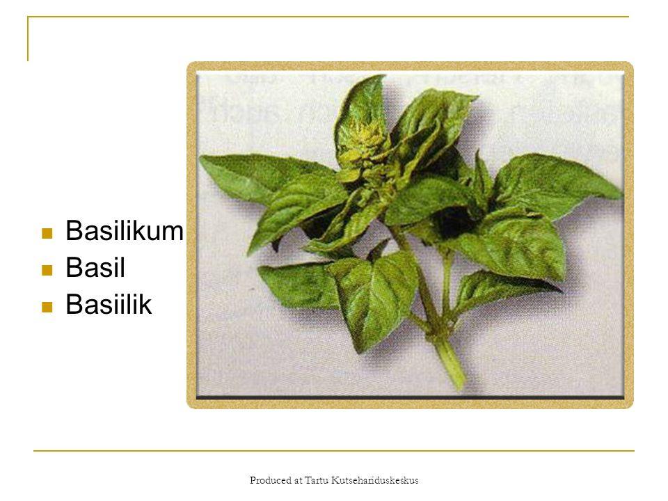 Produced at Tartu Kutsehariduskeskus Basilikum Basil Basiilik